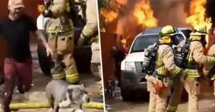 家裡失火「愛犬還困在裡面」!他不顧消防員反對衝回火場 出來時「懷裡的寶物」讓大家都哭了