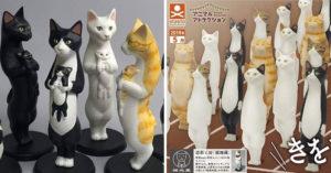 新魔性「立正貓軍團」扭蛋上市!貓奴看「橘貓身形」笑翻:設計師有做功課