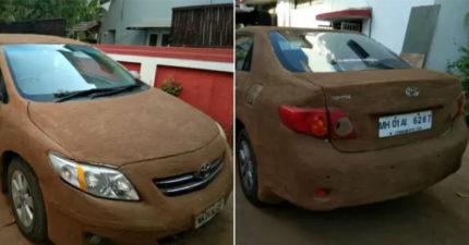 印度妹把「動物便便」塗滿整台車 過程超噁...效果卻好到「每個車主都該學」!