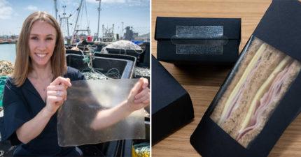 女大生發現「魚皮能當環保材料」拯救地球 比「塑膠還強韌」未來連紅藻都是原料!