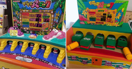 國小妹神手打造「紙箱打鱷魚機」 超高還原度「連嘴巴都能打開」被讚爆:真的能玩!