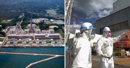 日本沒空間再儲存「福島核災廢水」 環境部長建議「排進太平洋稀釋」被罵爆:腦子進水?