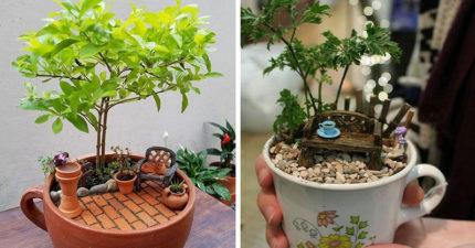 20個「用茶杯做成花園」的超神作品 童話生活原來這麼爽