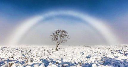 攝影師拍到超罕見奇景「幽靈彩虹」快門一按下就逃跑