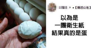 買蛋發現「整坨衛生紙」被丟架上 近看才發現真的能吃!