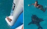 辣媽溜滑梯下海「巧遇鯊魚」 跟死神「擦肩過程」嚇壞所有人