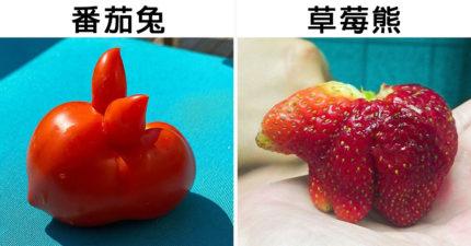 20個「隱藏特務身份」的蔬果 向日葵變「萬聖節魔人」超可怕
