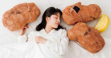 日推吃貨最愛「雞塊抱枕」 口袋設計讓你「用聽的」就飽了
