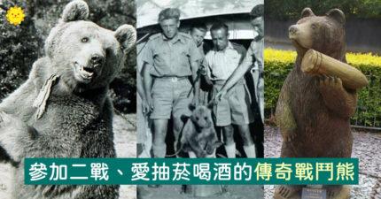最狂寵物!「傳奇戰鬥熊」參二戰、愛抽菸喝酒 各地都有「雕像」歌頌牠