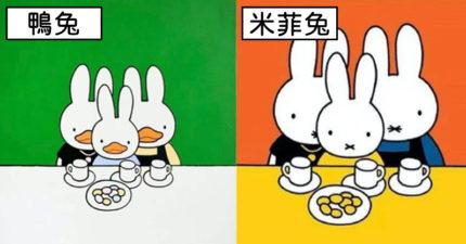 急停展!創作「鴨兔」否認抄襲 中國教授作品交米菲兔:協議「永不再用」