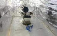 警察搜出6個詭異貨櫃屋 打開驚見「隔音行刑室」暗網都真的!