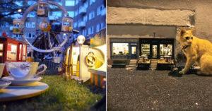 瑞典街巷蓋起「老鼠專用」超迷你世界 貓皇守門口:還不回家?